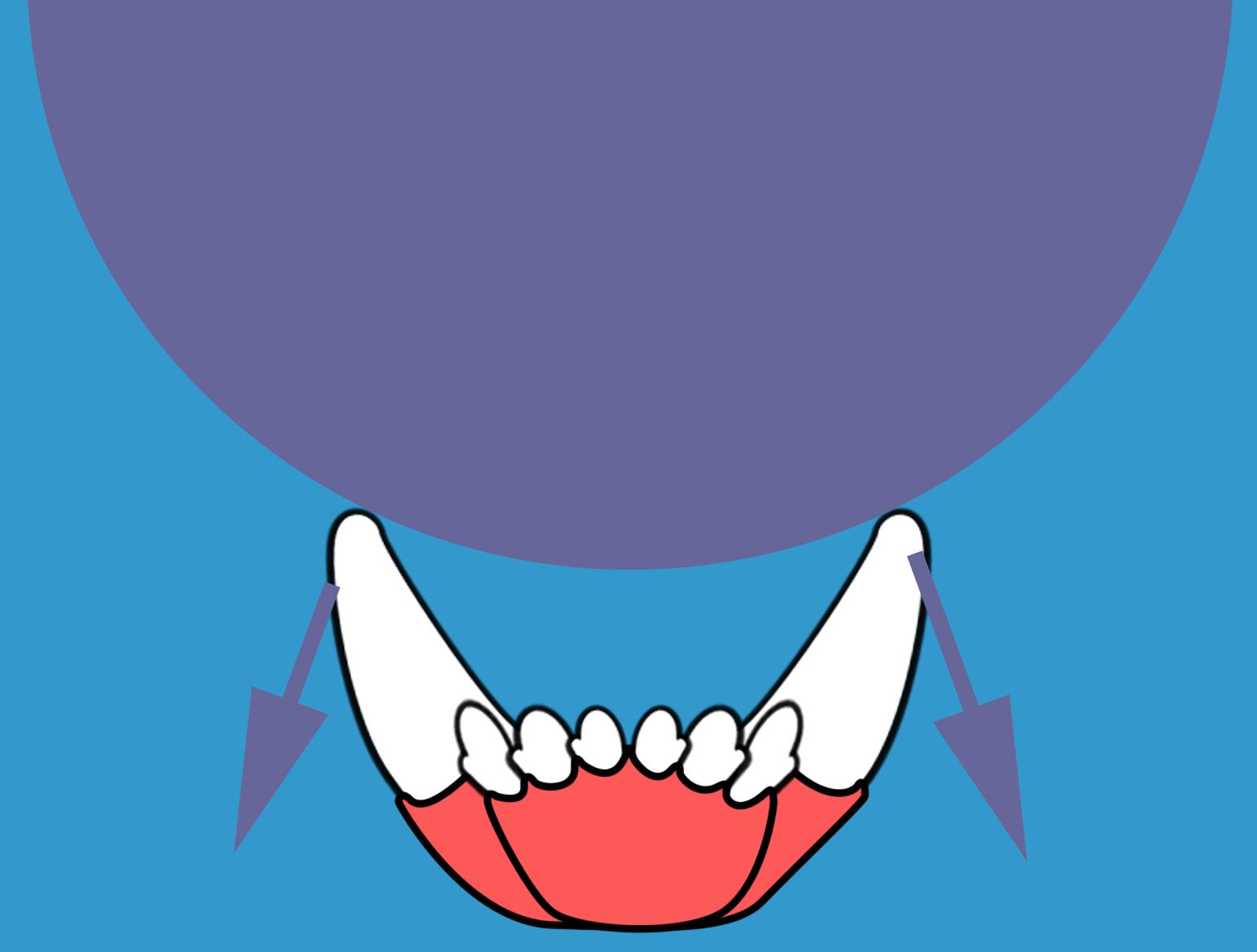 This ball is too large to effectively put outward force on the canine teeth.
